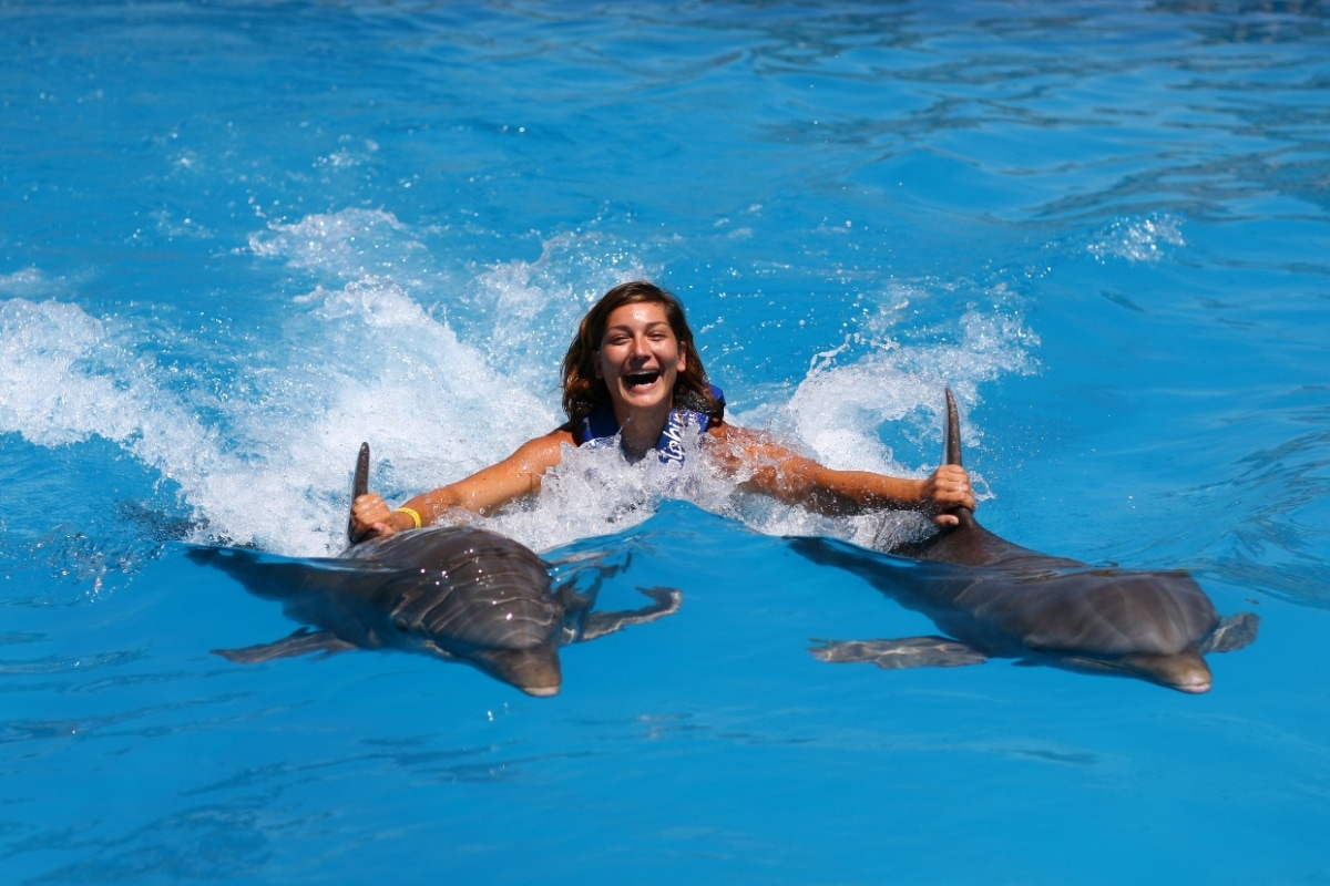 Dolphin Royal Swim - Akumal-0