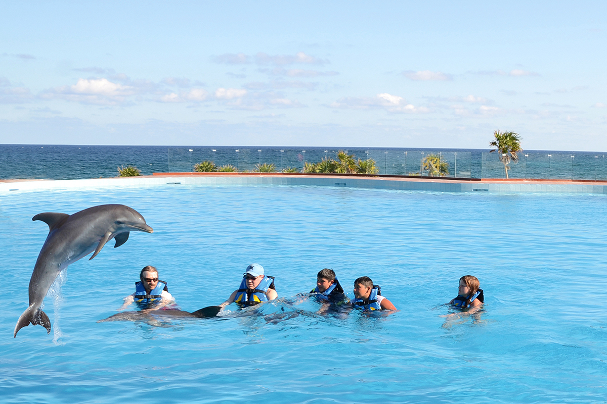 Dolphin Royal Swim - Akumal-3