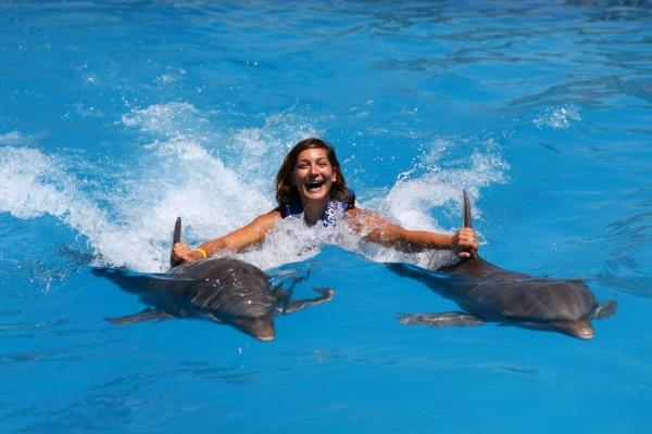 Dolphin Royal Swim - Akumal