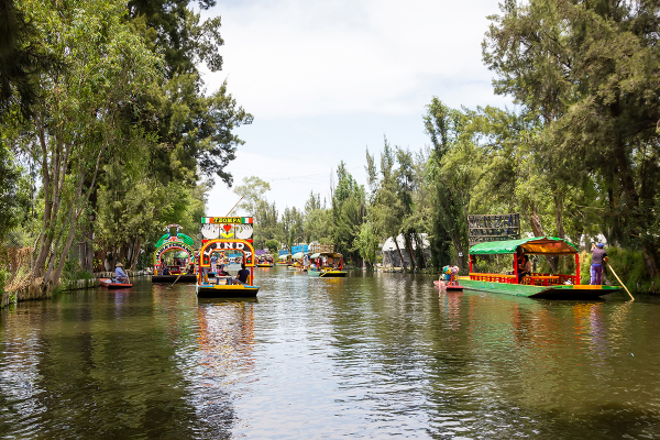 Xochimilco Aztec Canals & National University of Mexico